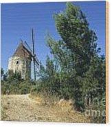 Moulin Of Daudet. Fontvieille. Provence Wood Print by Bernard Jaubert