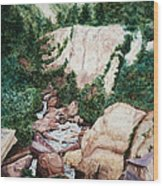 Mounrain Creek Falls Wood Print by Vikki Wicks