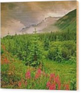 Mount Amery And Fireweed Wood Print
