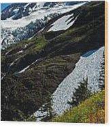 Mount Baker Floral Bouquet Wood Print