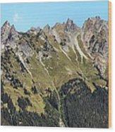 Mount Baker National Forest Wood Print