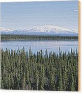 Mount Drum, Sanford And Wrangell Wood Print