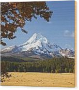 Mount Hood And Autumn Colours In Hood Wood Print