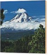 Mount Hood Framed By Trees, Oregon, Usa Wood Print