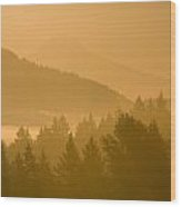 Mount Hood, Oregon, Usa Silhouetted Wood Print