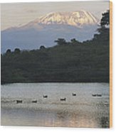 Mount Kilimanjaro Rises Above One Wood Print