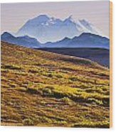 Mount Mckinley, Denali National Park Wood Print