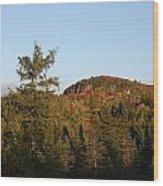 Mount Rockwood Wood Print