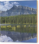 Mount Rundle And Boreal Forest  Wood Print