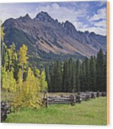 Mount Sneffels And Fence Wood Print