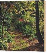 Mount Stewart, Co Down, Ireland Wood Print