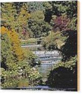 Mount Usher Gardens, River Vartry, Co Wood Print