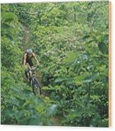 Mountain Biker On Single Track Trail Wood Print