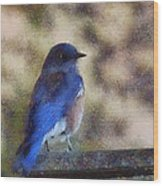 Mountain Bluebird Painterly Wood Print