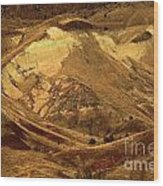 Mountain Buds Wood Print