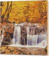 Mountain Creek Falls Wood Print