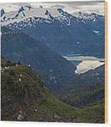 Mountain Flock Wood Print by Mike Reid