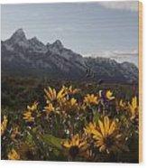 Mountain Flowers Wood Print