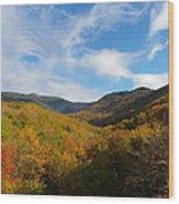 Mountain Foliage And Blue Skies Wood Print