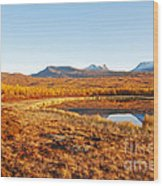 Mountain In Autumn Wood Print by Conny Sjostrom