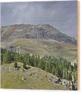 Mountain In St Moritz Wood Print
