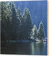 Mountain Lake In Arbersee, Germany Wood Print