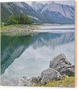 Mountain Lake In Jasper National Park Wood Print by Elena Elisseeva