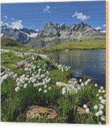 Mountain Lake, Near Schwarzee, Zermatt Wood Print
