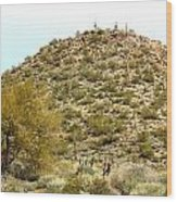 Mountain Of Cactus Wood Print
