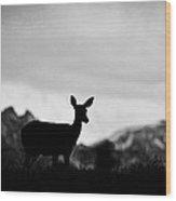Mountain Overlook Wood Print
