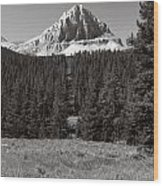 Mountain Peak Above The Tree Line Wood Print