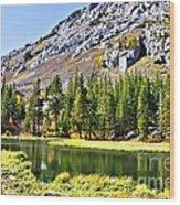 Mountain Pond Wood Print