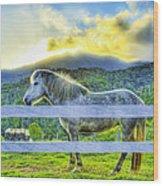 Mountain Pony Wood Print