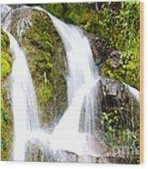 Mountain Spring 3 Wood Print