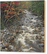 Mountain Stream In Autumn, White Wood Print