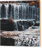 Mountain Stream Waterfall Wood Print
