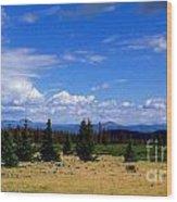 Mountain Top Landscape II Wood Print