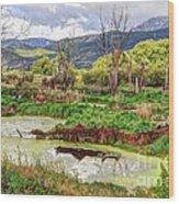 Mountain Valley Marsh - Hdr Wood Print