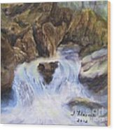Mountain Waterfalls Painting Wood Print