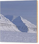 Mountains Above Kings Glacier Wood Print