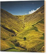 Mountains And Hills Wood Print