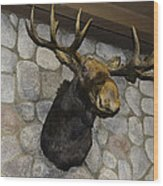 Mounted Moose Wood Print