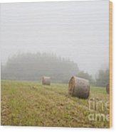 Mown Grass Wood Print