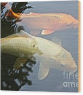 Mr And Mrs Koi Wood Print