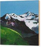 Mt Aspiring Wood Print