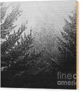 Mt Desert Fog Wood Print