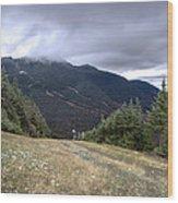 Mt Manfield Vermont 20 Wood Print
