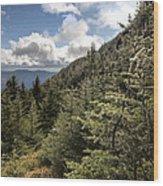 Mt Manfield Vermont 21 Wood Print