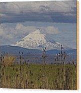 Mt Mclaughlin Springtime Wood Print