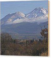 Mt Shasta Autumn II Wood Print